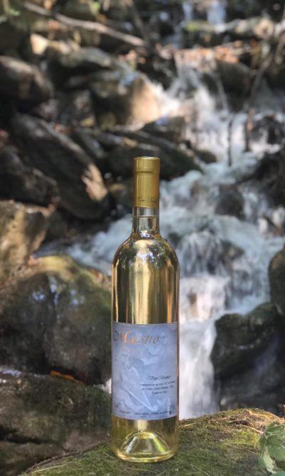 """""""Maestro"""" Vino Bianco vitigno Baratuciat della Valle di Susa (TO)"""