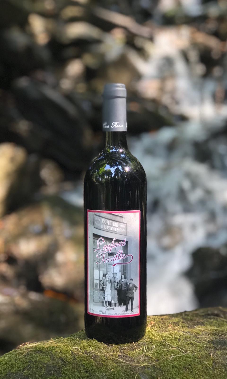 """""""L'enfant terrible"""" Vino rosso vitigno Avanà della Valle di Susa (TO)"""